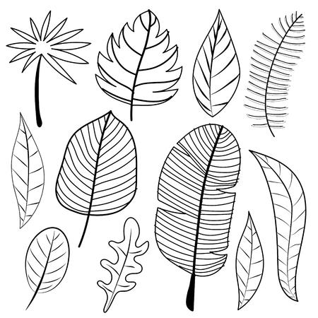 Leaves Doodle Vector Set.