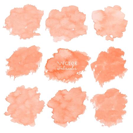 Orange watercolor set on white background, Vector illustration.