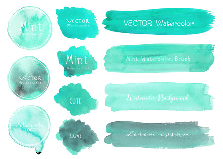 Set of mint watercolor on white background, Brush stroke watercolor, Vector illustration. Ilustrace