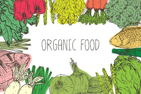Hand drawn organic food background. Organic herbs, spices and seafood. Healthy food drawings set elements for menu design. Vector illustration.