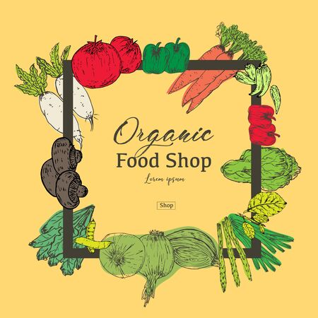 Hand drawn organic food banner. Organic herbs and spices. Healthy food drawings for sale. Vector illustration.