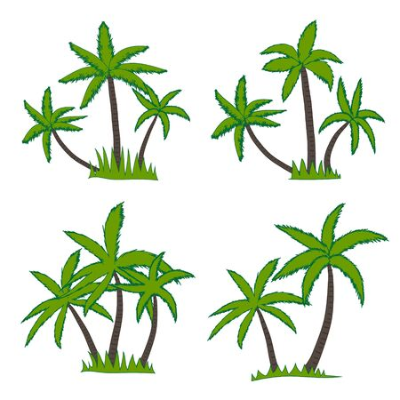 Set of coconut palm tree isolated on white background. Vector illustration.