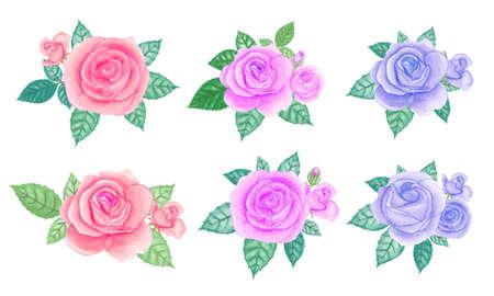 Watercolor rose bouquet elements set. 免版税图像