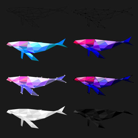 Set of Whale polygon geometric. Vector illustration.