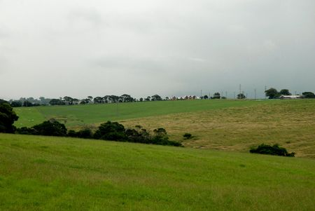 Green fields in dairy country. Stock Photo
