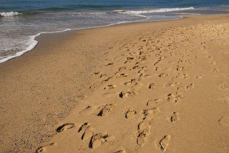 Foot Traffic On A Beach.