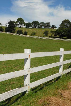White Farm Fence Stock Photo