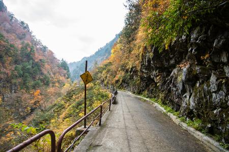 red mountain: Autumn Pathway under Mountain, Japan