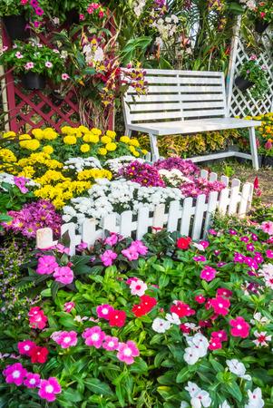 jardines con flores: Silla de madera blanca en el jardín de flores. Foto de archivo