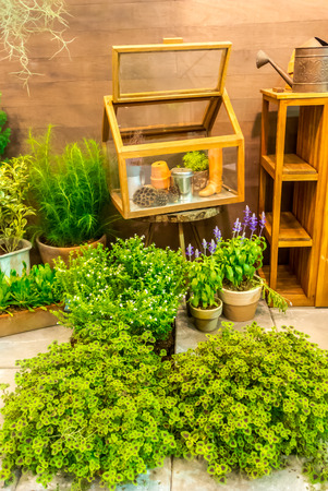 relax garden: Gardening tools and cabinet in relax garden.