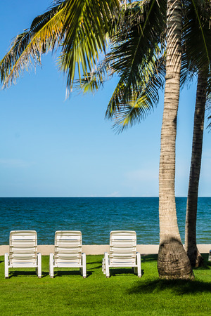 reclining chair: Relaxing Tanning beds under palm tree on remote beach.