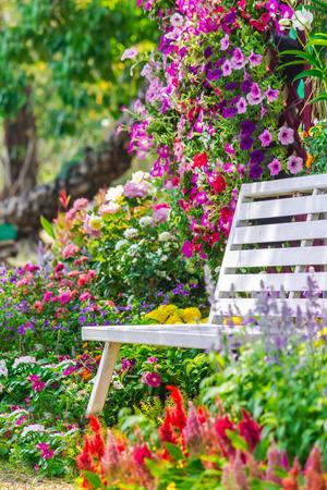 Witte houten stoel in de bloemen tuin op de zomer.