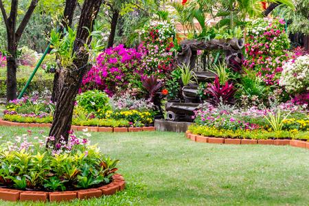 Cozy home flower garden and flower pot decoration on summer.