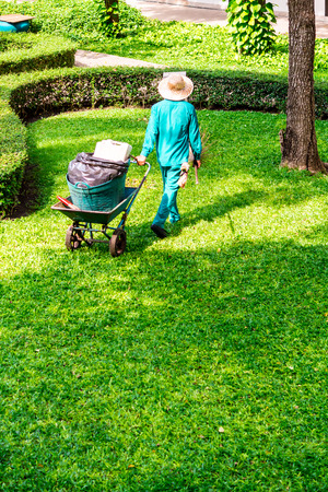 Gardenner sweep leaves and cleaning in cozy garden on summer.