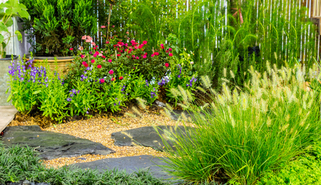 Stone walkway in cozy garden with flower and plant.