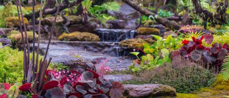 Panorama stream flows through cozy home flower garden after rain.