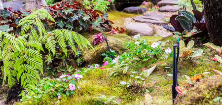 Stone steps and green moss decoration in japanese cozy home flower garden after rain.