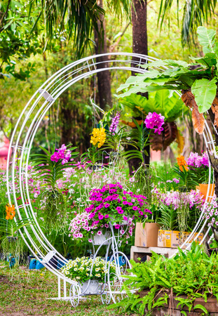 Vintage white bike and flower pot decoration in cozy home flowers garden on summer. Stok Fotoğraf