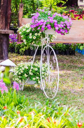 Vintage white bike and flower pot decoration in cozy home flowers garden on summer. 版權商用圖片