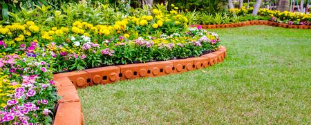 Flower pot decoration in cozy home flower garden on summer.