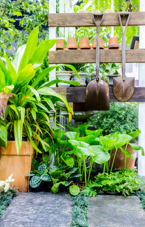 Working space and shelf with garden tools in cozy home garden on summer. Reklamní fotografie