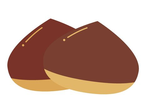 Illustration of multiple glossy raw chestnuts. No shadow.