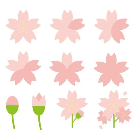 Cherry blossom sshe blooms forecast, illustration set. Petals.