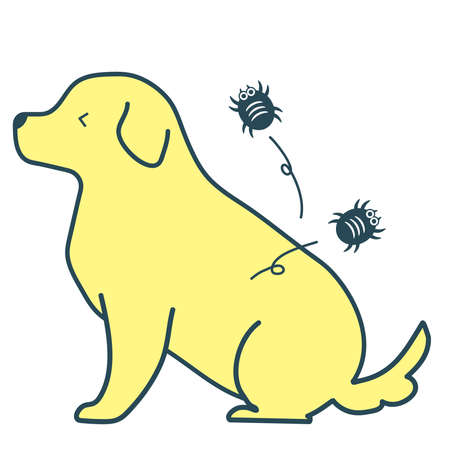 An illustration of itching because mites and fleas are parasitic on the dog.