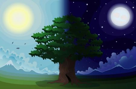 overnight: L'albero in un campo su uno sfondo di montagne di giorno e di notte, vettore Vettoriali