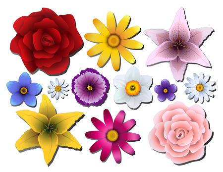 part of me: Ilustración vectorial Conjunto de flores de diferentes colores Vectores