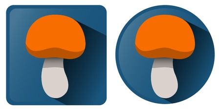 grebe: Vector illustration  Square and round icon with the mushroom