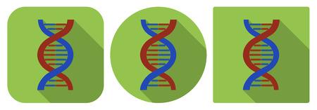 icone tonde: Illustrazione vettoriale. Icone quadrate e circolari di DNA in design piatto