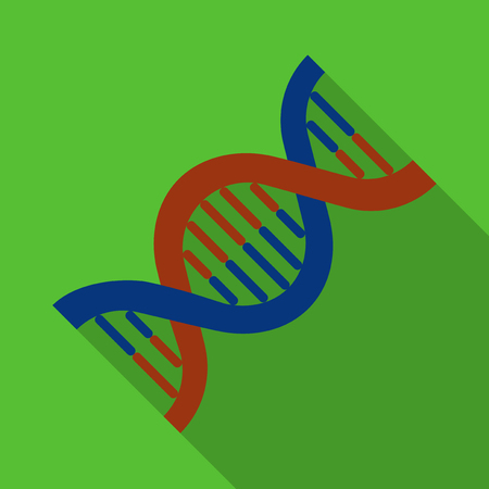 genetic modification: Vector illustration. Icon square shape of human DNA in flat design