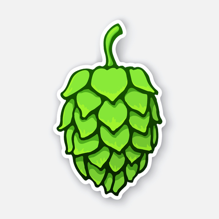 A green cone of hop, Symbol of alcoholic beverage, Sticker with contour Isolated on white background, Decoration for patches, prints for clothes, emblems, signboards, labels illustration.