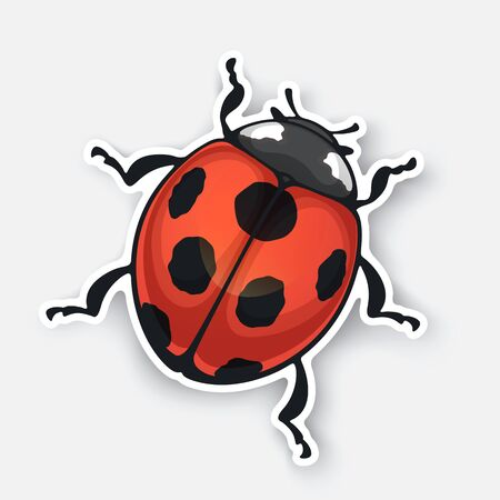Vector illustration. Sticker of ladybug top view with contour. Red bug with black spots. Isolated on white background Ilustracja