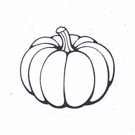 Pumpkin with stem. Healthy vegetarian food. Ingredient for vegetable menu. Vector illustration. Only outline Isolated on white background. Clip art for packaging, label, menu, signboard