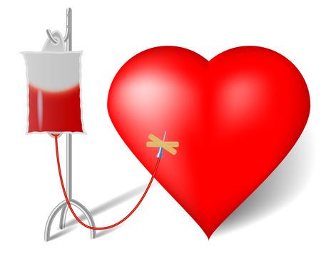 donor: La transfusi�n de sangre que fluye hacia el coraz�n Vectores