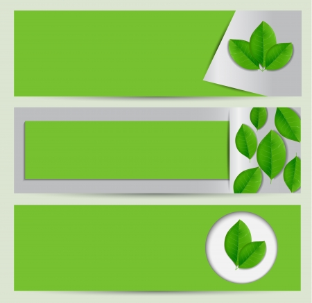Clean green eco banner set with leaves