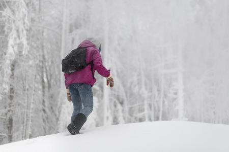 campaign: winter campaign