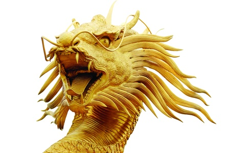 Sculpture dragon in isolated