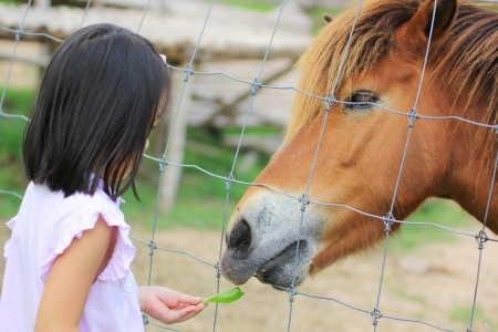 Close up children and horse Stock Photo