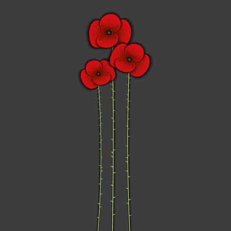 opium: Red poppy