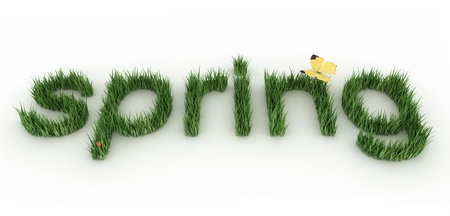 The word spring made of a green grass. Stock Photo