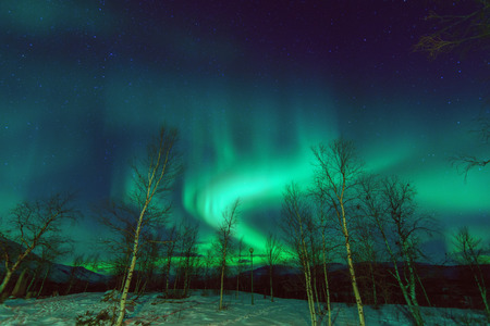 Northen lights phenomenon Aurora Borealis in Lapland.