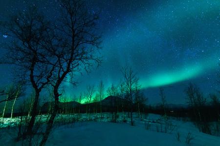 Aurora Borealis Northen lights phenomenon in Nikkaluokta, Sweden.