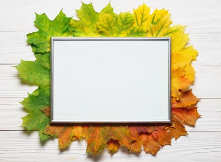 Autumn leafs colorful rainbow color gradient composition with picture frame copy space.