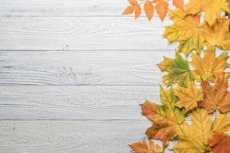 Autumn border with leaves on vintage white wood background.