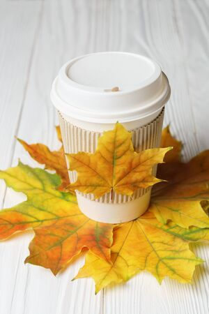 Paper cup of coffee or tee to go take away mug fast food and autumn leaves on white wood Stok Fotoğraf