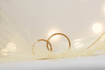 Wedding delicate background with rings, feather and bokeh in the background. Tenderness, tender love concept. Stok Fotoğraf