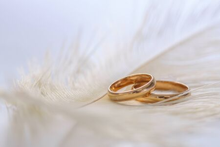 Wedding delicate background with rings and feather on the white background. Tenderness, tender love concept.